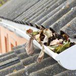 報告:災害天氣頻繁 屋主保護措施遠不夠